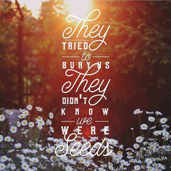 They tried to bury us, they didn't know we were seeds #quotes #motivation…