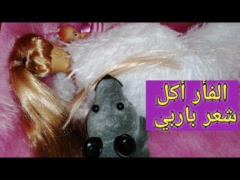 يوميات باربي الفأر أكل شعر باربي قصص أطفال قصيرة حكايات باربي Youtube Barbie Dolls Barbie Dolls