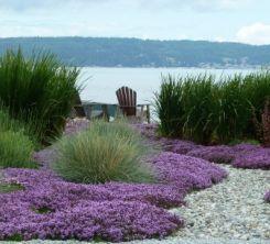 Coastal Landscape.....Peaceful
