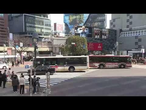 スクランブル ライブ 渋谷 映像 交差点 [大晦日]渋谷の混雑2020