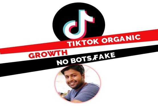 I Will Organically Grow Your Tiktok Account Digital Marketing Social Media Accounting Social Media Marketing