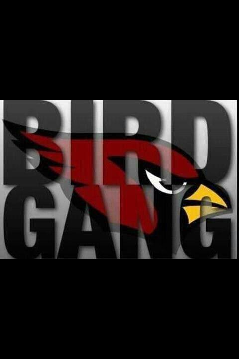 1000+ images about Az Cardinals on Pinterest | Arizona Cardinals ...