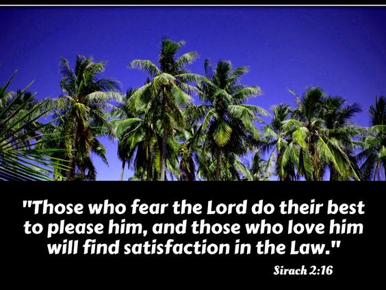 Sirach 2:16