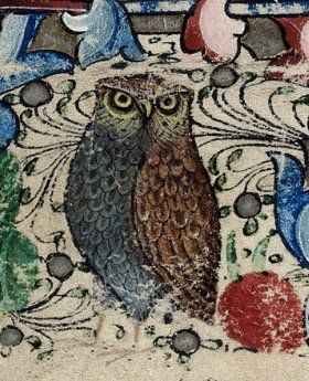 A beautiful depiction of an owl (Harley, MS 2887, f. 29):
