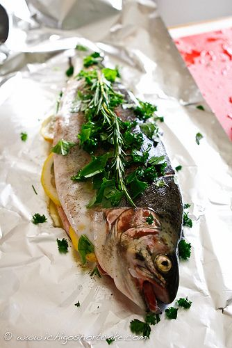 Trout fishing & 2 trout recipes (lemon & herbs, Chinese with ginger & soy based sauce) | Ichigo Shortcake