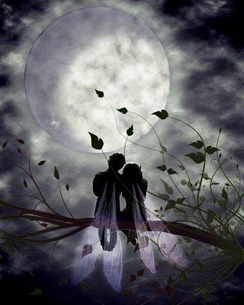 Fairy Couple & Full Moon
