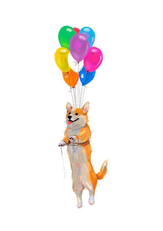 風船で飛ぶおしゃれでかっこいい犬の壁紙