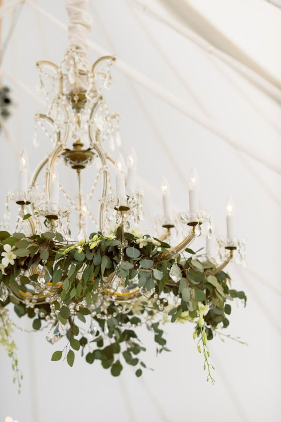 In love with this vintage chandelier that is decorated with natural green vines. A few of these hanging inside of the tent for the reception will add a boho chic vibe.