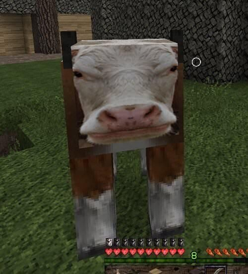 The New Minecraft Texture Pack Stupid Funny Memes Funny Memes Stupid Memes