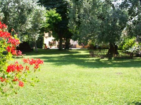 Holiday Home IL BALESTRUCCIO in S.Giuliano Terme - Pisa (Tuscany): garden
