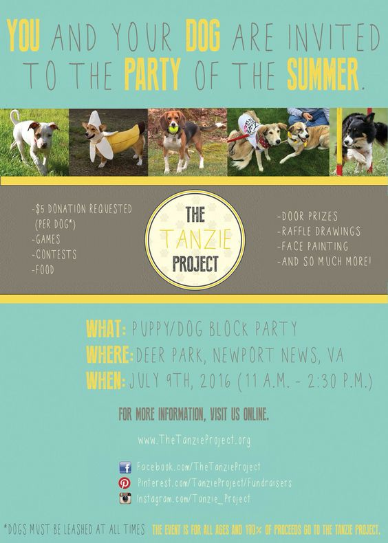 Come to my PAWESOME block party and help #savebosnianstrays!!