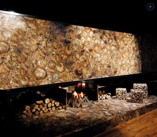 Brown Petrified Wood European Granite Marble Group Wood Wall Tiles Stone Tile Wall Petrified Wood