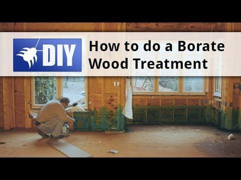 Boracare Is A Borate Based Product For Prevention And Control Of Termites Carpenter Ants Powderpost Beetles And Decay Termite Control Wood Treatment Termites