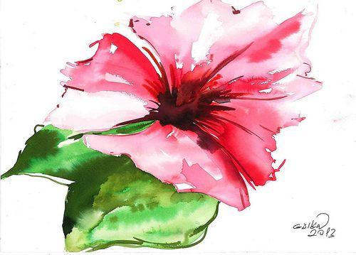 pembe çiçek-1