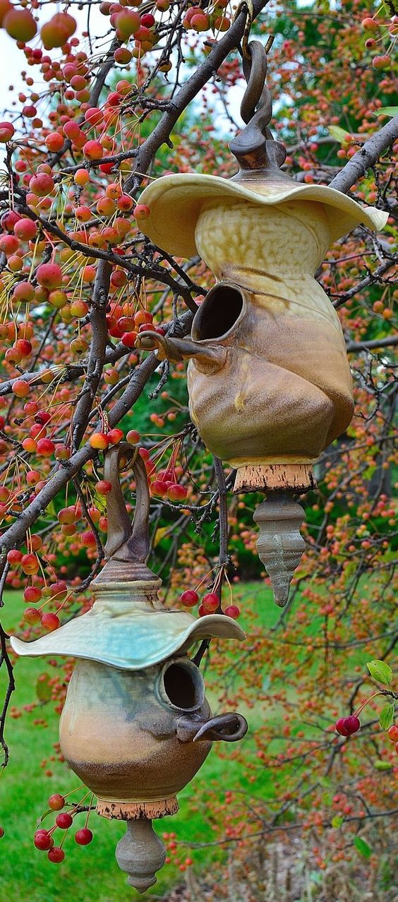 Birdhouses in the Royal Anne cherry tree: