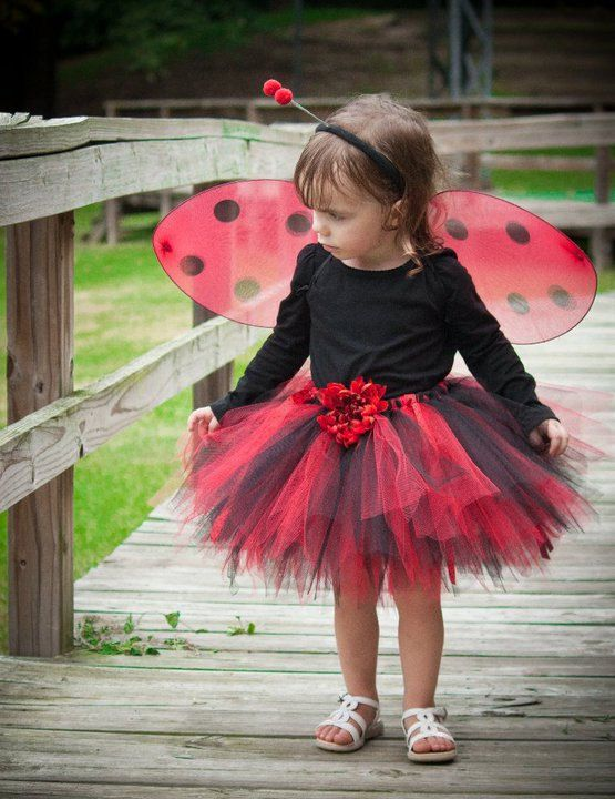 Lady Bug Costume. So cute! I think i might try this with a bumble bee this year!