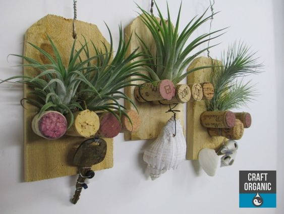 Air plant art hangers with left over fence pickets for Air plant art