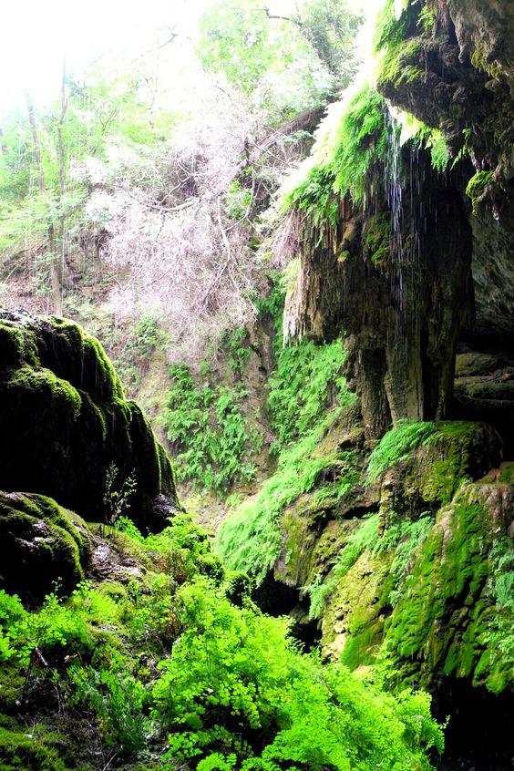 Westcave Preserve is a hidden gem in Austin, TX