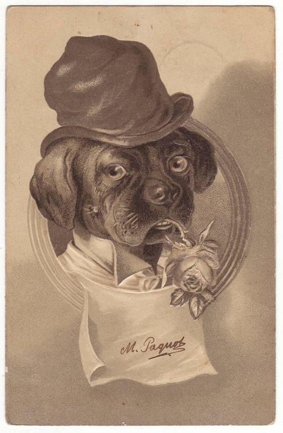 Antique german postcard with anthropomorphic dog. 1905