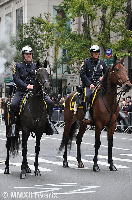 Newark Police | Flickr - Photo Sharing!