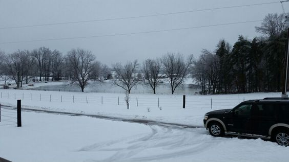 Snow day!  ;)
