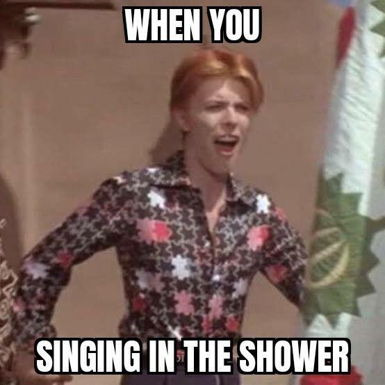 David Bowie Meme David Bowie Meme David Bowie Bowie