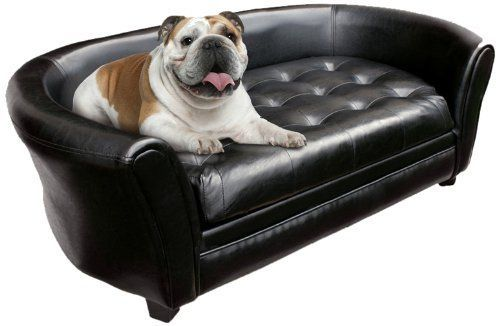 A Complete Guide To Luxury Dog Sofa Please Make The Right Choice Dog Couch Dog Furniture Sofa Couch Bed