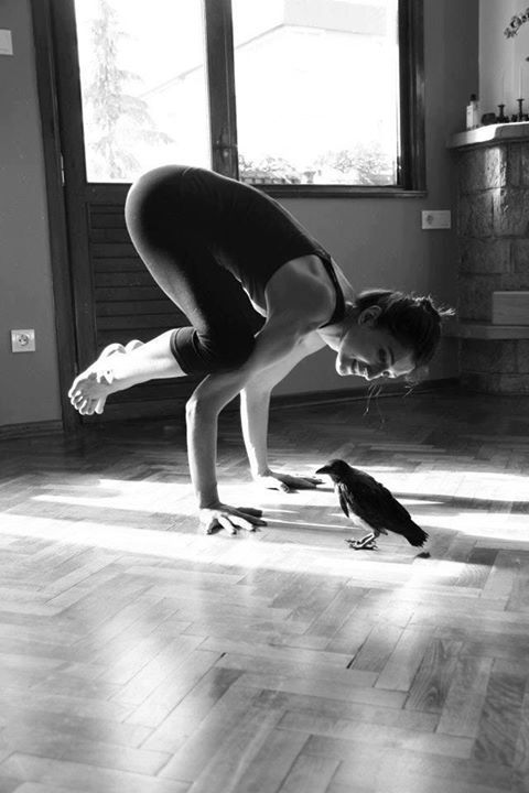 Kakasana Or Crow Pose