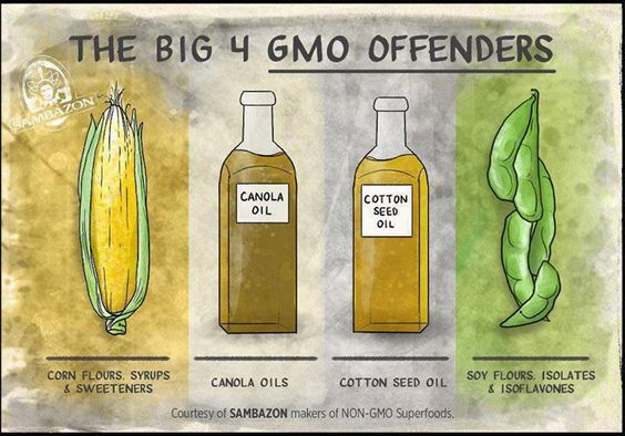 """The Big 4 GMO Offenders - Why Do We Get The POISON?!! All The Other Country's Have Labels &/Or Have Removed It Completely But NOT FOR THE USA?? .. """"Natural"""" doesn't mean non-GMO - BUY ORGANIC!! GMO IN THE USA=NO LABELS!!... MAKE YOUR FAMILY STERILE IN 3 GENERATIONS! EAT GMO FOODS!!!"""