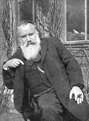 The great German composer Johannes Brahms (1833 - 1897) later in life.: