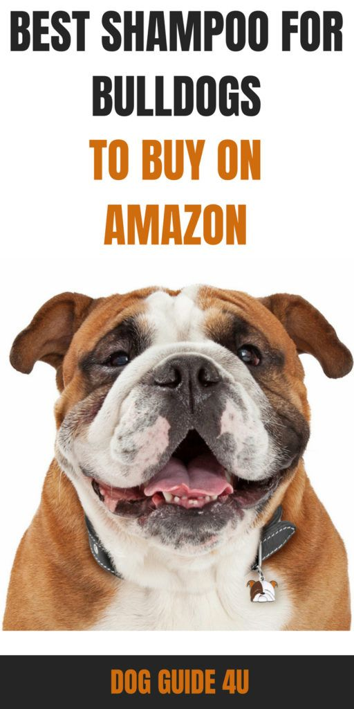 10 Best Shampoo For Bulldogs Bad Dog Breath Havanese Best Shampoos