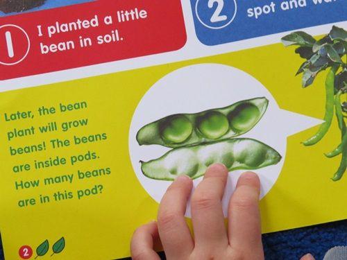 Supplementing curriculum in the preschool classroom with Scholastics by Teach Preschool