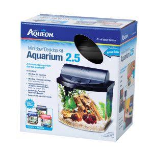 Minis cats and fish aquariums on pinterest for 5 gallon fish tank petsmart