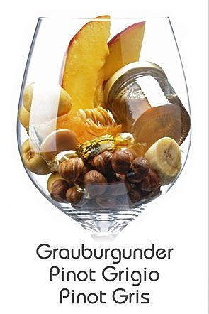 PINOT GRIS de plus en plus présent en Alsace,à l'origine de quelques-uns des vins les plus puissants et souples de la région,cette mutation à peau rose du pinot noir est un cousin du chardonnay,il est connu en Italie sous le nom de Pinot Grigio peut donner des vins secs,pleins de caractère,même si la majorité d'entre eux restent insipides et âpres,c'est la spécialité des vins de l'Oregon.