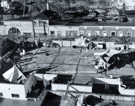 Inundación de 1955 Pinturas Selene