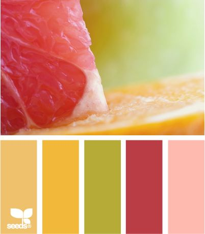 citrus crush: Design Seeds, Crush Color, Color Palette, Citrus Colors, Colour Palette, Color Combination
