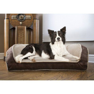Tucker Murphy Pet Hartzell Deep Seated Lounger Dog Sofa Size Large 40 W X 25 D X 13 H Colour Chocolate Brown In 2020 Animal Pillows Dog Sofa Bed Dog Bed