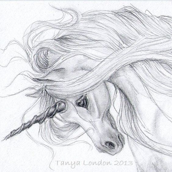 Realistic Unicorn Drawings | Unicorn Drawing In Pencil ...