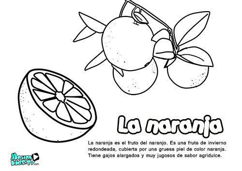 Frutas De Color Naranja Para Colorear Frutas De Color Naranja Dibujos Para Colorear Color Naranja
