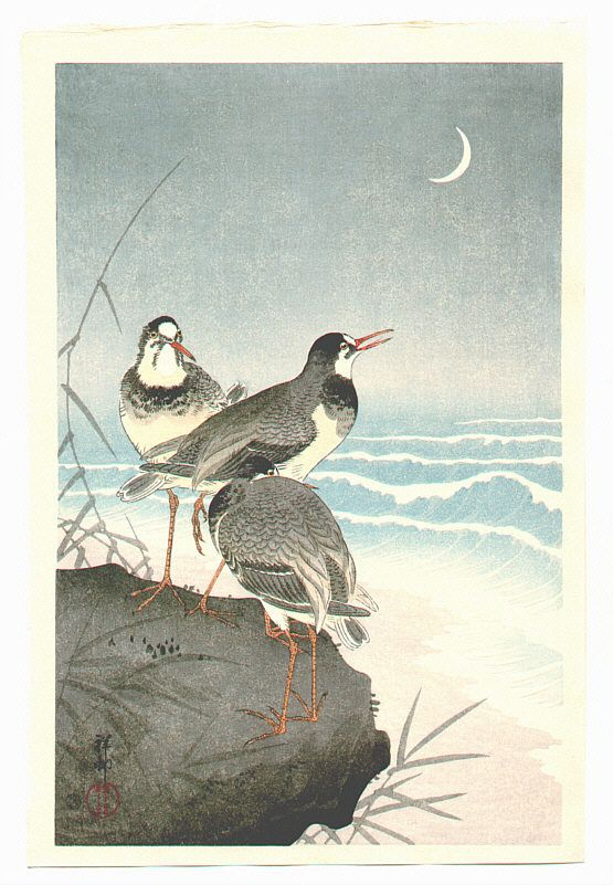 Ohara Koson: Plover near Seaside - 1926