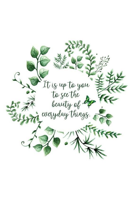 It S Up To You To See The Beauty Of Everyday Things Wall Art Quotes Nature Quotes Cute Quotes