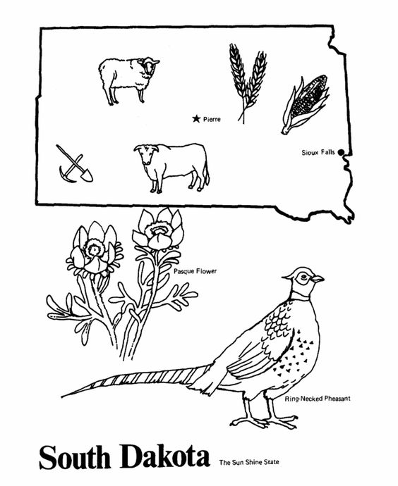 South Dakota State Outline And Coloring Pages On Pinterest
