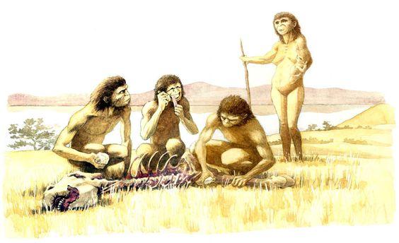 Historia y Evidencias geológicas en el Altiplano  A998eb122be8288eeb5495a5fddf7ef5