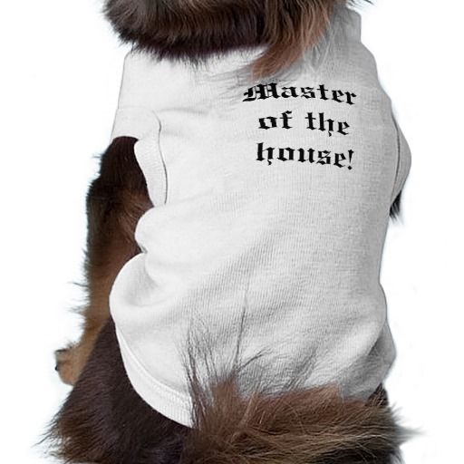 Master of the house!
