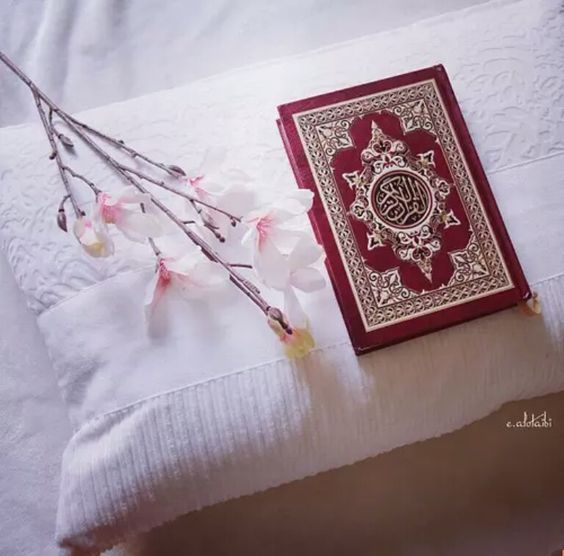 follow.me.on.instagram/@Soha_Writes | Quran pak, Quran