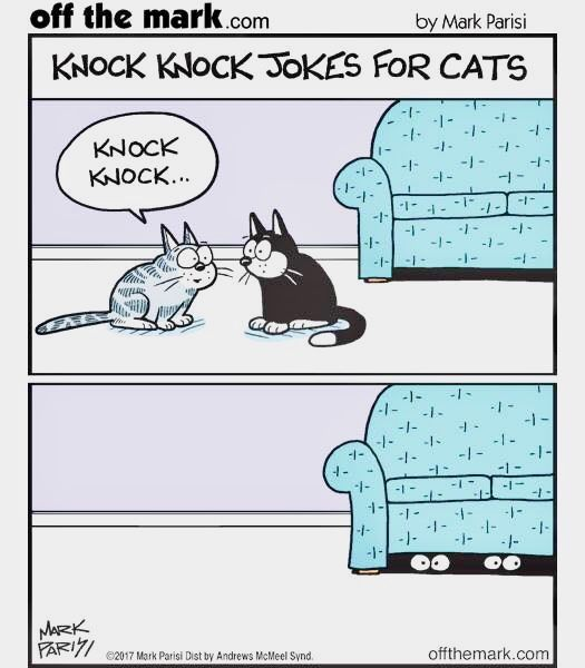 Off The Mark Knock Knock Jokes For Cats Cat Jokes Funny Cats Cat Memes