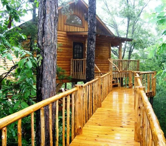 Pinterest the world s catalog of ideas for Tree house cabins arkansas