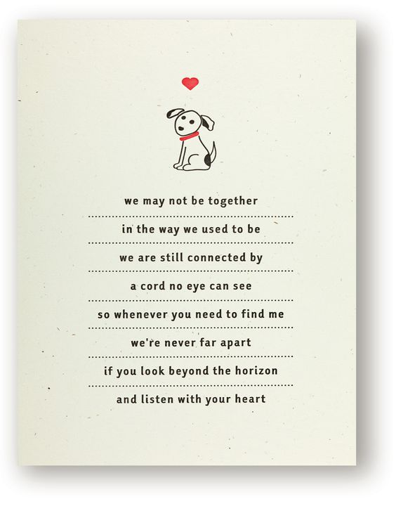 dog sympathy cards poems poemview co