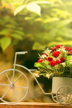 bicycles with flowers wallpaper - photo #25