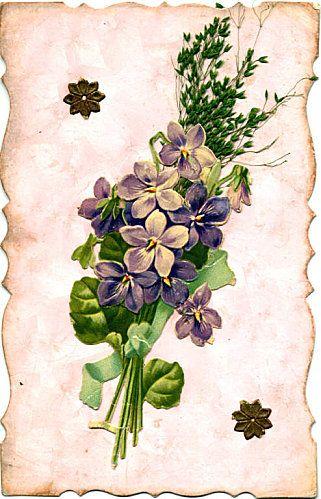 violets d co florale illustrations pinterest fleur design et violettes. Black Bedroom Furniture Sets. Home Design Ideas
